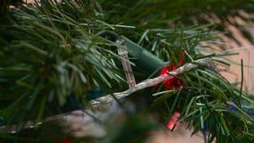 Guirnalda de las luces en el ?rbol de navidad almacen de metraje de vídeo