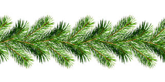 Guirnalda de las ramitas del árbol de pino de la Navidad Fotos de archivo libres de regalías