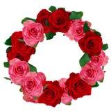Guirnalda de las rosas rojas y blancas Imágenes de archivo libres de regalías