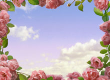 Decoración con las rosas Fotos de archivo libres de regalías