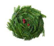 Guirnalda decorativa de la Navidad con las bayas rojas Foto de archivo