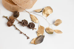 Guirnalda decorativa de la Navidad del cono, hojas imagenes de archivo