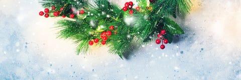 Guirnalda decorativa verde Holly Berries de la Navidad Imagenes de archivo