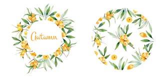 Guirnalda decorativa y marco redondo del espino cerval de mar Libre Illustration