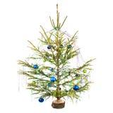 Guirnalda del día de fiesta en el árbol de navidad Imagen de archivo libre de regalías