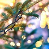 Guirnalda del día de fiesta en el árbol de navidad Imagenes de archivo