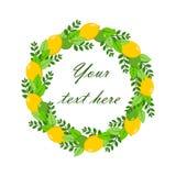 Guirnalda del ejemplo del vector del limón, de la cal y de las hojas Su texto en el centro Para el fondo, boda, cumpleaños, bande ilustración del vector