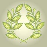 Guirnalda del laurel Foto de archivo libre de regalías