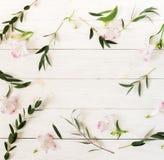 Guirnalda del marco de la frontera hecha de flores y de ramas rosadas del eucalipto imagenes de archivo