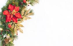 Guirnalda del pino de la poinsetia del día de fiesta de la Navidad falsa con el copyspace blanco Imagenes de archivo