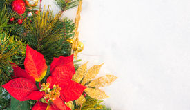 Guirnalda del pino de la poinsetia del día de fiesta de la Navidad falsa con el copyspace blanco Foto de archivo libre de regalías