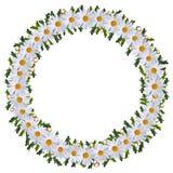 Guirnalda del pleno verano de flores Imagen de archivo libre de regalías