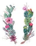 Guirnalda del ramo de las flores con el cactus, suculenta ilustración del vector