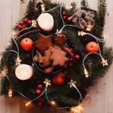 Guirnalda del ` s del Año Nuevo con las galletas del pan de jengibre para el partido de Navidad Torta del árbol de navidad en el  Foto de archivo libre de regalías
