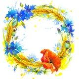 Guirnalda del trigo y del wildflower Ilustración de la acuarela Fotografía de archivo libre de regalías