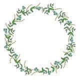 Guirnalda del vector de las flores y de las hierbas del jard?n Ejemplo dibujado mano del estilo de la historieta Marco lindo del  stock de ilustración