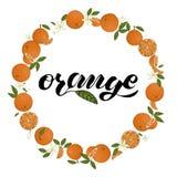 Guirnalda del vector de naranjas con las letras ilustración del vector