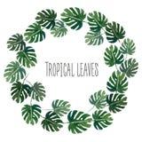 Guirnalda del verano de las zonas tropicales de la acuarela imagen de archivo libre de regalías