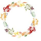 Guirnalda elegante del otoño de hojas multicoloras en impresiones de las hojas de diversos colores Guirnalda elegante del otoño d ilustración del vector