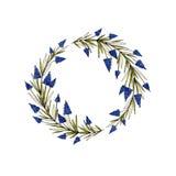 Guirnalda floral de la acuarela con el muscari, las hojas del verde y las ramas Fotos de archivo
