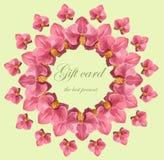 Guirnalda floral de la acuarela con las orquídeas foto de archivo libre de regalías