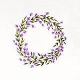 Guirnalda floral de la acuarela con lavanda, hojas del verde y ramas Imagen de archivo libre de regalías