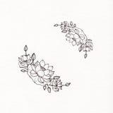 Guirnalda gráfica con las flores del loto Imágenes de archivo libres de regalías