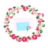 Guirnalda hecha de rosas frescas y de sobre secado del flor y azul con la tarjeta rosada en el fondo blanco Fotografía de archivo