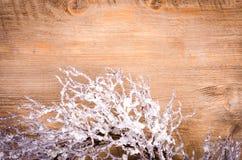 Guirnalda nevosa de la Navidad, decoración del Año Nuevo Fotos de archivo libres de regalías