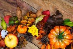 Guirnalda rústica de las hojas de la caída del colorfull de la acción de gracias Imagenes de archivo