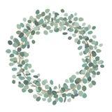 Guirnalda redonda con el eucalipto del dólar de plata Las hierbas curativas para las tarjetas, casandose la invitación, los carte stock de ilustración