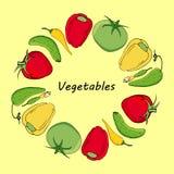 Guirnalda redonda con las verduras amarillas, rojas y verdes Los tomates, los pepinos y los pepprs circundan con el espacio para  Foto de archivo libre de regalías