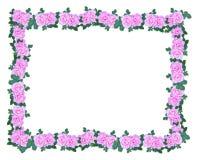 Guirnalda rosada de las rosas Foto de archivo