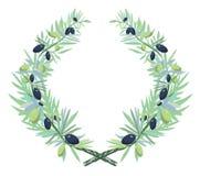 Guirnalda verde oliva Ilustración del Vector