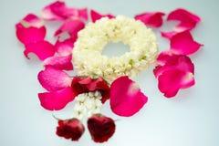 Guirnalda y rosas del jazmín Fotos de archivo