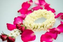 Guirnalda y rosas del jazmín Imágenes de archivo libres de regalías