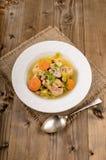 Guisado da carne de porco com cenoura, aipo, batata e salsa Imagens de Stock Royalty Free