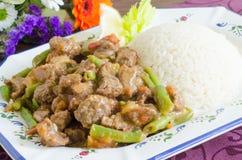 Guisado de carne com feijões verdes e arroz Imagens de Stock
