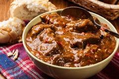 Guisado de carne servido com pão duro Imagens de Stock