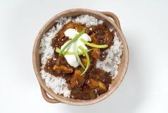 Guisado de la carne con arroz Foto de archivo