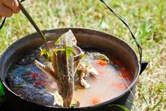 Guisado de pescados Imagen de archivo libre de regalías