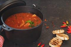 Guisado dos peixes e do tomate no potenciômetro do ferro fundido Imagem de Stock Royalty Free