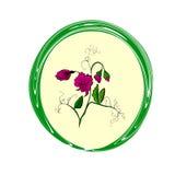 Guisante de olor de la flor Imagen de archivo libre de regalías