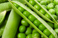 Guisante verde Fotografía de archivo libre de regalías