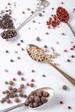 Guisantes de la pimienta negra, roja, blanca en cucharas del metal en un fondo blanco chile, paprika foto de archivo libre de regalías