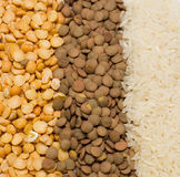 Guisantes, lenteja, arroz Imagenes de archivo