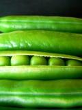Guisantes verdes Imágenes de archivo libres de regalías