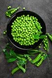 Guisantes verdes con las vainas y las hojas Imagen de archivo libre de regalías