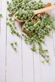 Guisantes verdes congelados Fotos de archivo