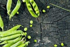 Guisantes verdes en un tocón en un fondo de madera Fotos de archivo